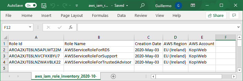 Export AWS IAM Roles Excel